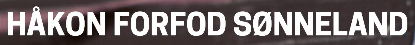 sonneland.no logo